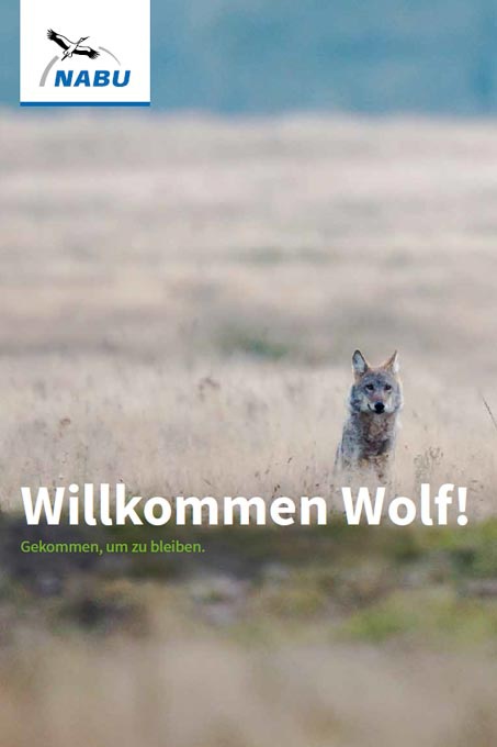 nabu-wolf-broschuere