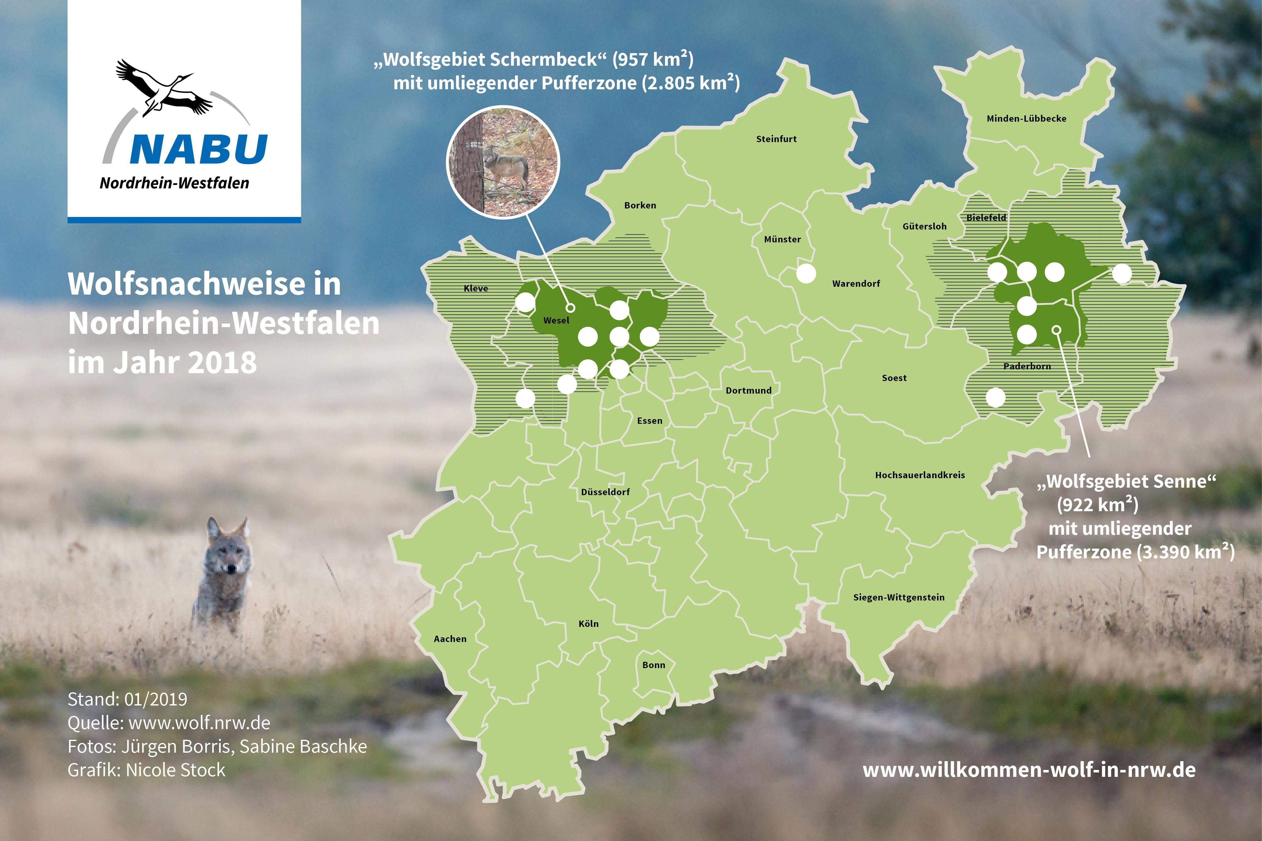 Sauerland Karte Deutschland.Landesfachausschuss Wolf In Nrw Nabu Wölfe In Nrw